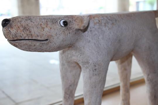 Člověk a zvíře - výstava
